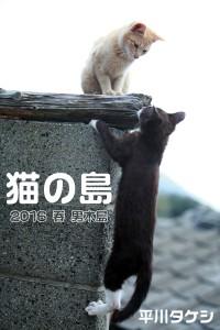 ogi_cat02
